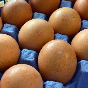 Half Dozen Eggs